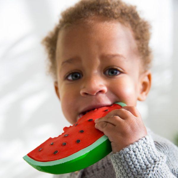 Wally The Watermelon
