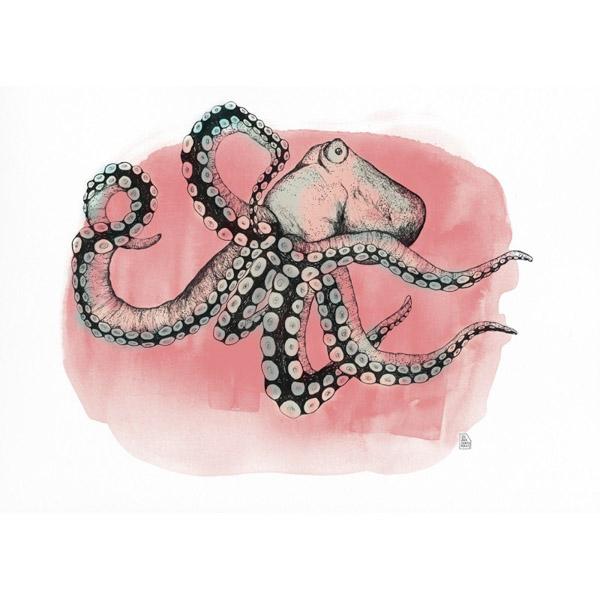 Lámina Pink Octopus